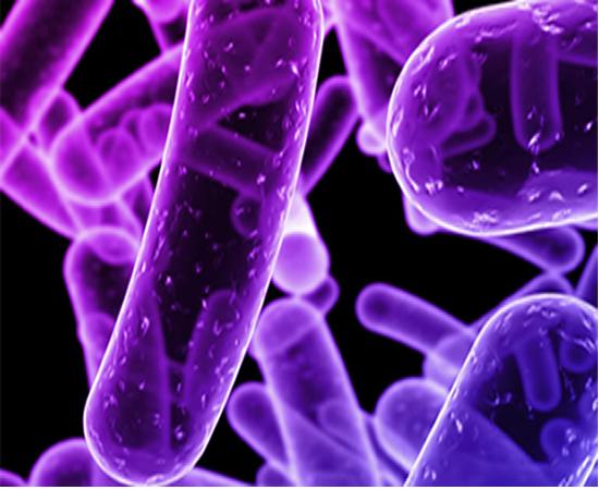 Vigilancia, prevención y control del Cólera