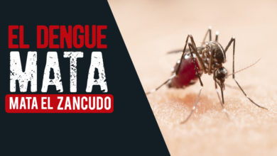 Photo of Vigilancia, prevención y control de dengue